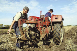 Огроман пад у броју запослених у пољопривреди 1