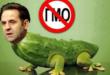 Љајић би да поново легализује промет ГМО отрова у Србији