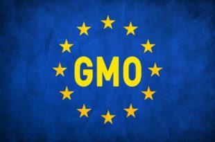 ЕУ дигла рампу за ГМО храну