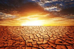 Пакао: Гореће Земља 2014.