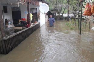 Вапај мештана поплављеног Мајданпека: Хоће ли неко да нам помогне?! (фото галерија)