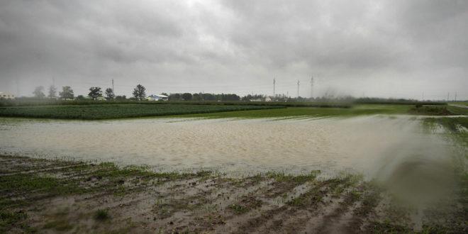 Ако је Бог крив за поплаве засто плаћамо паре за одводњавање водопривреди? (видео) 1