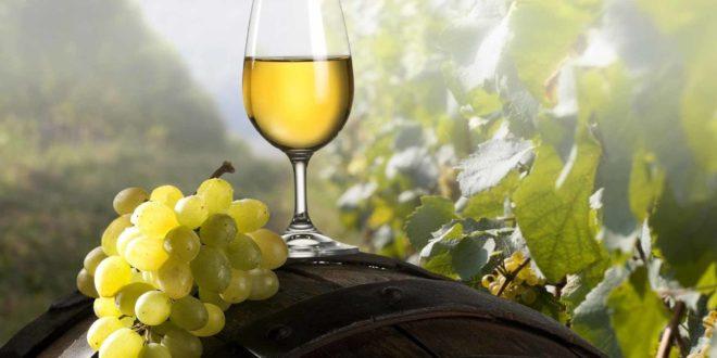 Србиjа да буде нова винска региjа, Шумадиjа српска Tоскана 1