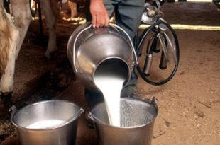 Од Нове године српско млеко и млекари без икакве заштите, увоз неограничен и без плаћања царине!