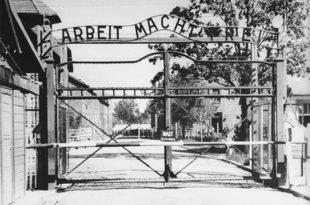 """Аустрија забрањује бурке и да уводи """"друштвено корисне радове за избеглице"""" јер РАД ОСЛОБАЂА!"""