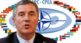 Џаба се Мило умиљавао НАТО 2