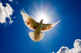 Недељни биоскоп: Порука с небеса (видео)