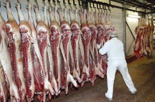 Расте цена свињетине