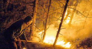 АПЕЛ Не палити ватру у природи због повећаног ризика од пожара 12