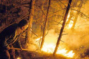 АПЕЛ Не палити ватру у природи због повећаног ризика од пожара