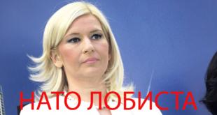 Михајловић: За седам дана одлука о смањењу плата и пензија 10
