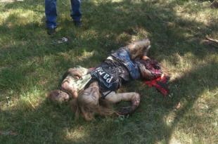 Кијевска хунта убила преко 30 цивила у бомбрадовању Горловке али не брините они нису Холанђани тако да о њима нема вести