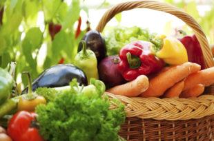 Органска производња у Србији убрзано расте 2