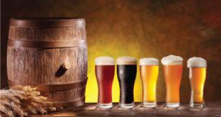 Пиво пила и српска властела 5