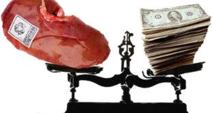 Шиптари новцем из ЕУ купили опрему за трговину органима на Космету!