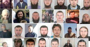 Војници терористичких система све бројнији