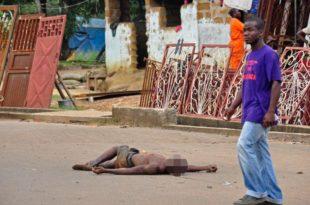 Плански геноцид над Африком!