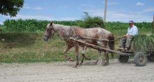 ЕУ РАЈ: Румуни се масовно исељавају у потрази за бољим животом