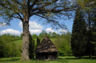 Прича о селу Брајковац (видео)
