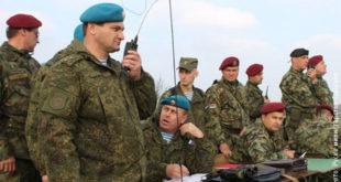АЈДЕ! ЕУ против заједничких војних вежби Русије и Србије 8
