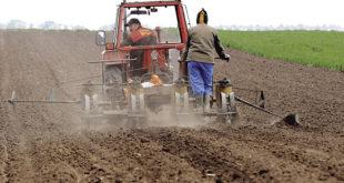Сељаку пензија није довољна ни да плати струју 9