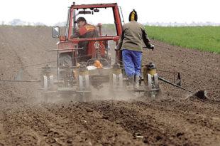 Сељаку пензија није довољна ни да плати струју