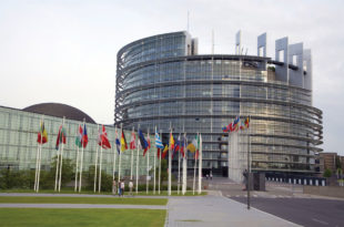 Сулејман Угљанин се захвалио Мартину Шулцу на Резолуцији о Сребреници коју је усвојио Европски парламент