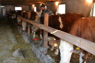 Какав је план Вучић спремио за уништење српског сељака и села