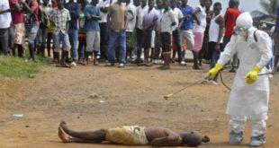 """""""ММФ је одговоран за ширење еболе у Африци"""""""
