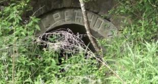 О чему Србија ћути - Напуштени рудник уранијума на Старој планини (видео) 11