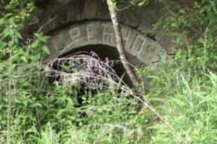 О чему Србија ћути - Напуштени рудник уранијума на Старој планини (видео)