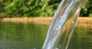 Србија: За почетак лечења наших вода и водовода, већ је прошло дванаест сати 8