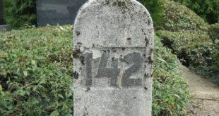 Путевима смрти козарске дјеце - Тајна парцеле број 142 на загребачком гробљу Мирогој (пдф књига) 9
