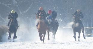 Шабац: Новогодишње коњичке трке 6