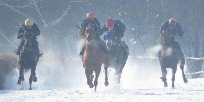 Шабац: Новогодишње коњичке трке 1