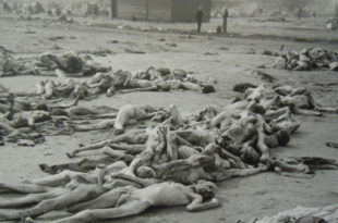 Европа и човечанство