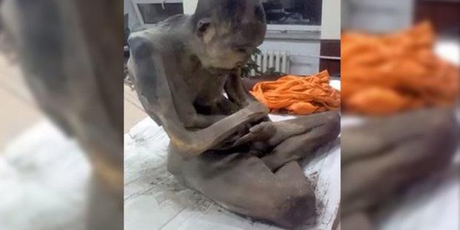 Пронађени мумифицирани свештеник за кога будисти верују да је жив (видео) 1