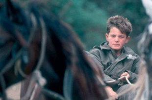 Дечак на бранику отаџбине