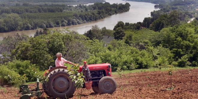 Недимовић: Дуг пољопривредника за ПИО 1,5 милијарди евра