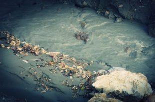 Јаловиште неодговорности - на извору еколошке катастрофе (видео) 7