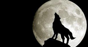 Вечерас делимично помрачење Месеца 2