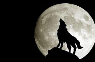 Вечерас делимично помрачење Месеца 10