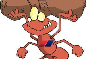 Био једном један мрав (Извињавамo се чика Душку Радовићу) 6