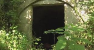 СТАРА ПЛАНИНА: Због уранијума се рађају наказе (видео) 10