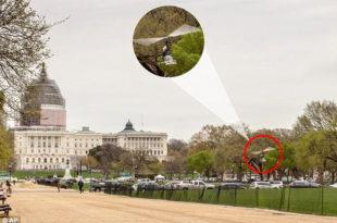Паника у Вашингтону! Пензионисани поштар од 61 годину извршио хеликоптерски десант у двориште америчког Конгреса (видео)