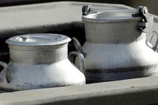 Млеко из БиХ због лошег квалитета не може у ЕУ али га Србија зато највише увози јер је нама изгледа одлично!