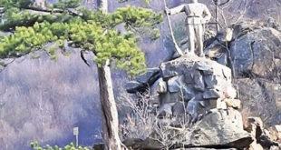 Подмлађен српски војник у долини Ибра 2