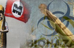 """""""Запад би Украјину да претвори у земљиште за узгој ГМО отрова"""""""