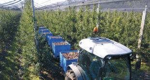 Пројекат за обнову села: Делта аграр обезбеђује откуп и кредитирање производње 12