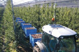 Пројекат за обнову села: Делта аграр обезбеђује откуп и кредитирање производње